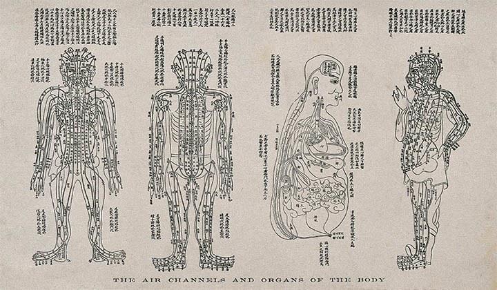 Tässä artikkelissa on selitetty kiinalaise lääketieteen peruskäsitteistä kattavasti ja kansantajuisesti