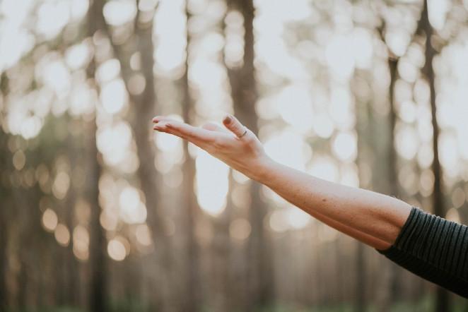 Akufunktion kevään ensimmäinen terveysteema on käsien terveys